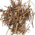 Xiang Ru 香薷 Herba Elsholtziae seu Moslae