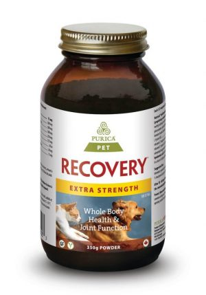 Pet Recovery Extra Strength 350g