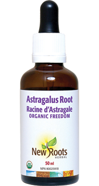 Astragalus Root 50