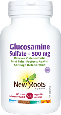 Glucosamine Sulfate 500 mg 500 caps